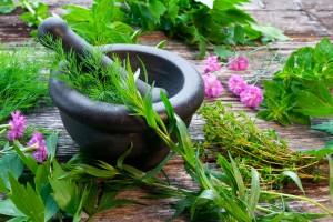 Ayurveda za naravno zdravje in lepoto kože